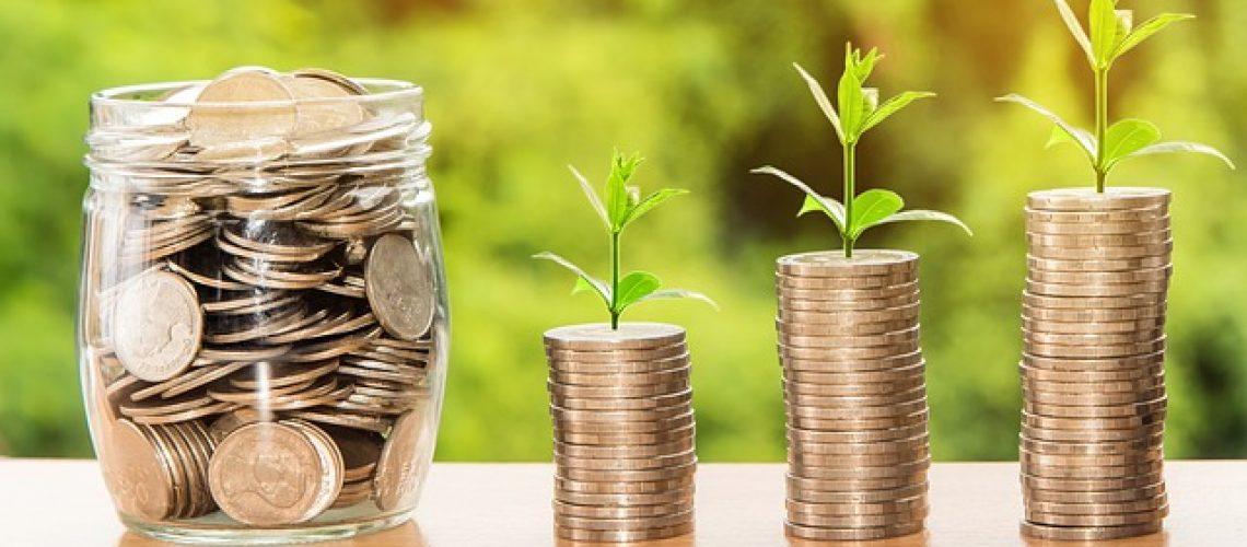 לווי פיננסי לעסקים קטנים